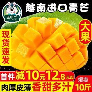 越南芒果進口青芒10斤新鮮水果包郵當季整箱應季特大甜心芒青皮