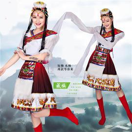 2017新款藏族水袖舞蹈服女西藏长袖服装少数民族长裙演出服大摆裙