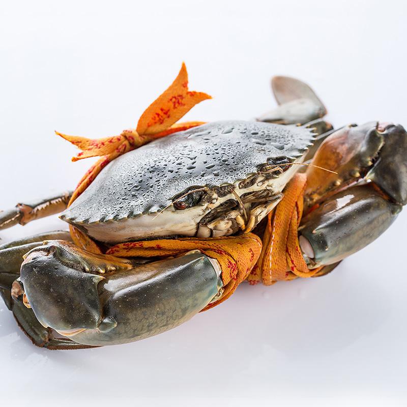 海鲜水产鲜活海蟹正宗三门青蟹大红膏蟹大公蟹2公2母三斤套装包邮