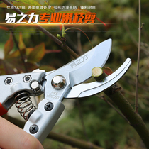 Garden Shears horticultural scissors household coarse-branched scissors fruit tree pruning shear labor plant flower grafting pruning tool