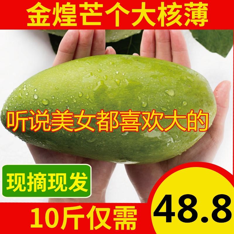 金煌芒果新鲜包邮广西特大青芒10斤整箱5斤现摘水果批发当季整箱
