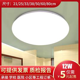 全白LED吸顶灯 客厅卧室餐厅阳台走道 简约现代圆形 全白工程灯具图片