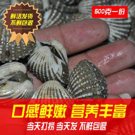 潮汕血蛤新鲜血蛤鲜活花蛤血蚶赤贝泥蚶贝类制品水产海鲜鲜活包活