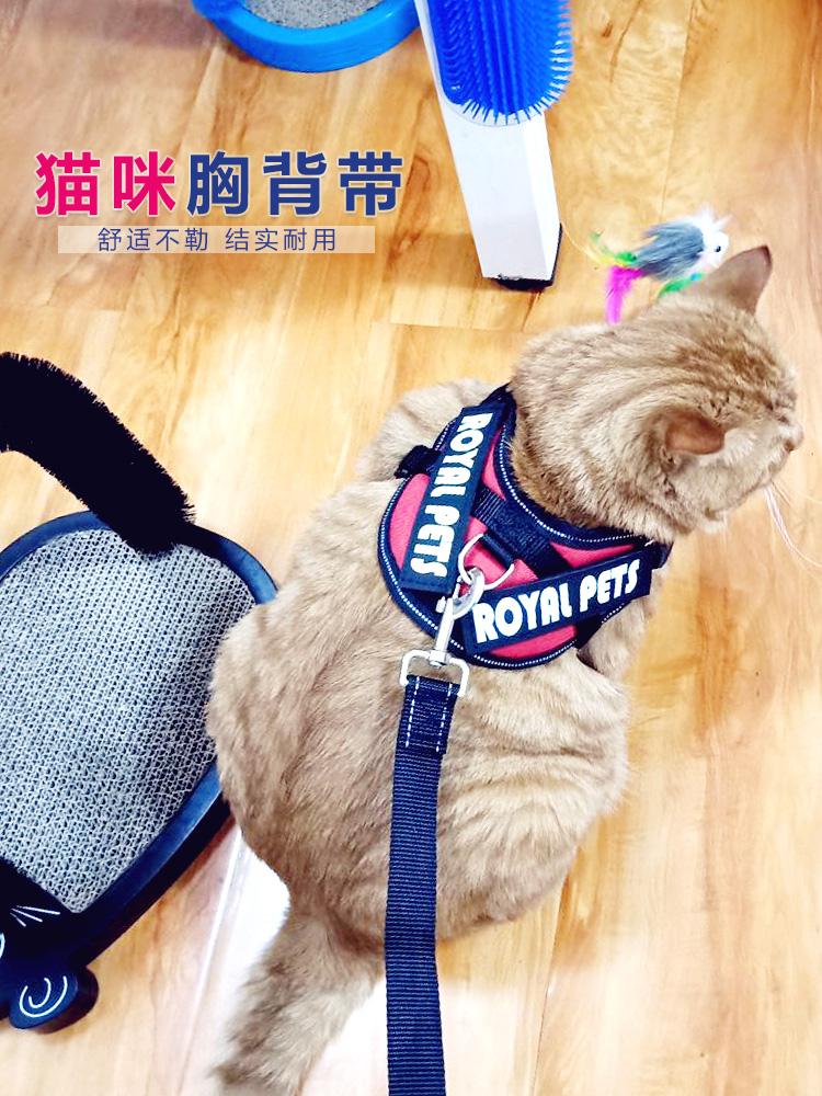 牵引绳遛猫绳子猫溜猫绳防逃脱背带