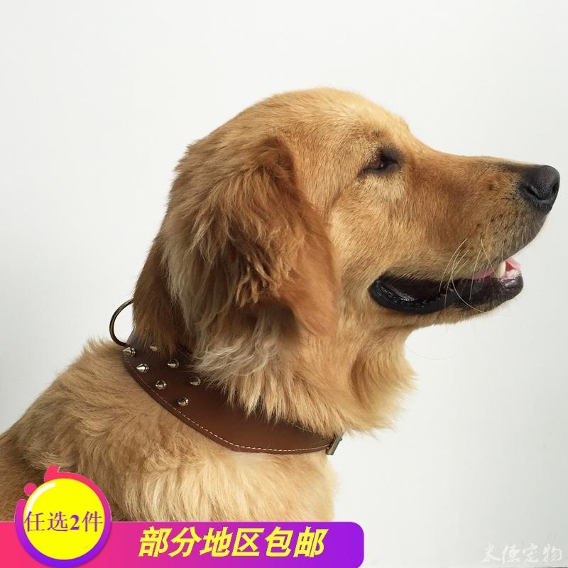 金毛狗狗颈圈牵引带 刺钉颈圈中大型狗颈圈 项圈脖套脖颈圈绳子套