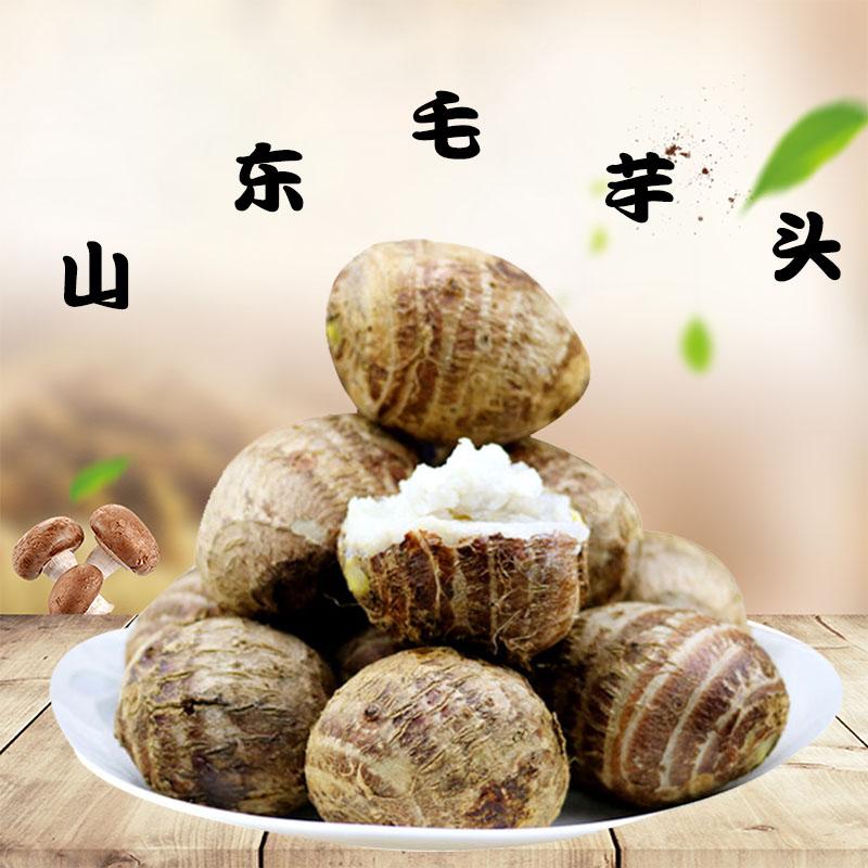 山东毛芋头小芋头芋艿子香芋头新鲜农家自种现挖有机蔬菜5斤包邮