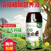 Plant life green leaf surface fertilizer amino acid melon fruit vegetable horticultural plant growth regulator yellow leaf one spray green