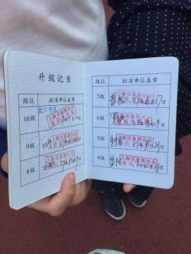 Шанхай город шахматы модернизированный матч тест уровень матч отчет имя
