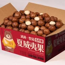 原味坚果称斤干果零食夏威夷果仁盒1500g夏威夷果仁比比妙