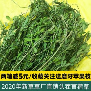 兔子紫花苜蓿草龙猫豚鼠幼兔烘干牧草饲料兔粮2020新鲜优质干草