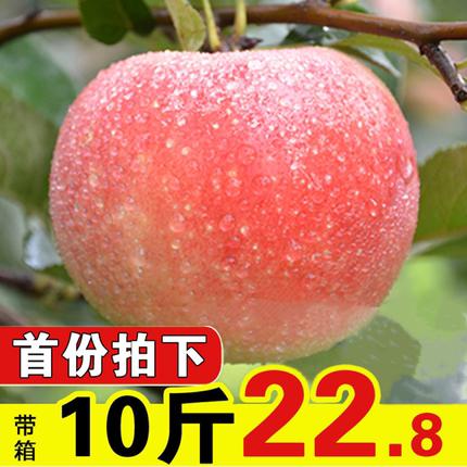 现摘苹果10斤包邮山西嘎啦苹果新鲜水果整箱非栖霞红富士丑苹果