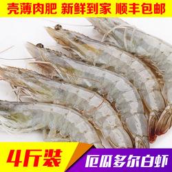 厄瓜多尔白虾深海捕捞海鲜4斤装大号规格南美对虾基围虾顺丰包邮