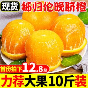 领5元券购买秭归伦晚脐橙橙子10斤新鲜水果超甜应当季现摘冰糖甜橙整箱手剥橙