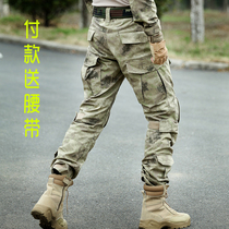 Spring and Autumn camouflage work pants female outdoor overalls special Forces for training pants multi-pocket military pants slimming Tactical Pants Man