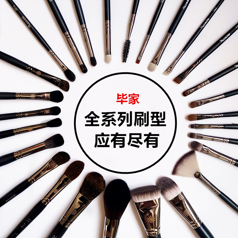Picasso pony recommended 133 loose powder brush 224 halo dye brush blush brush high gloss brush set