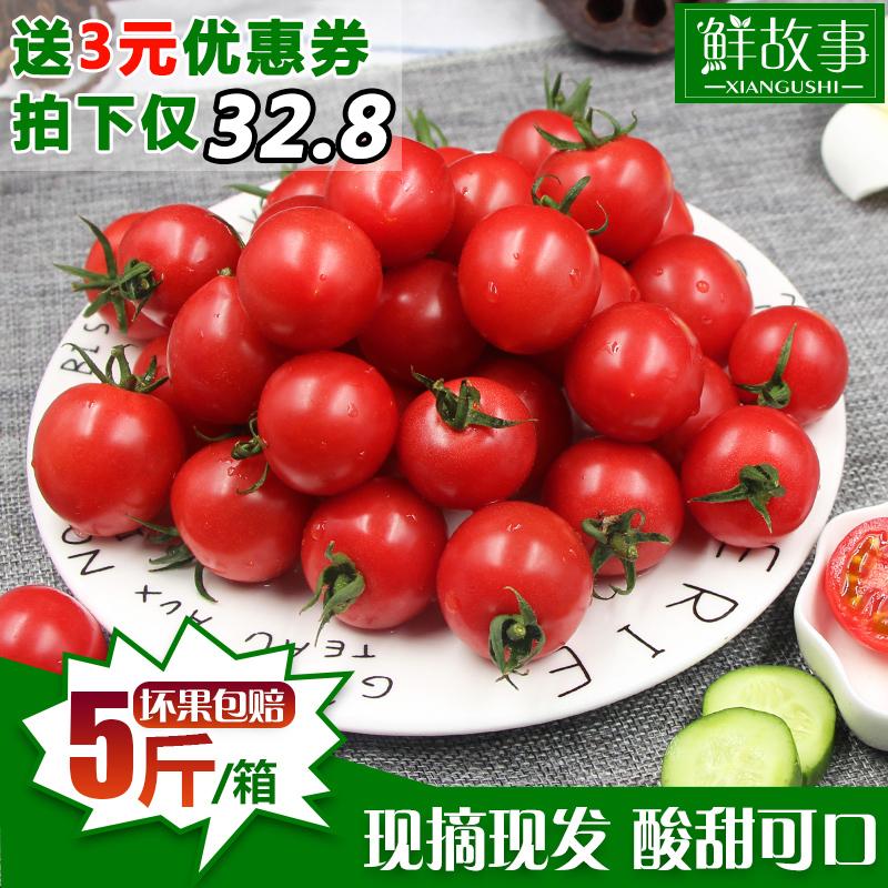 鲜故事现摘贝贝圣女果新鲜蔬菜小番茄樱桃西红柿小西红柿5斤包邮
