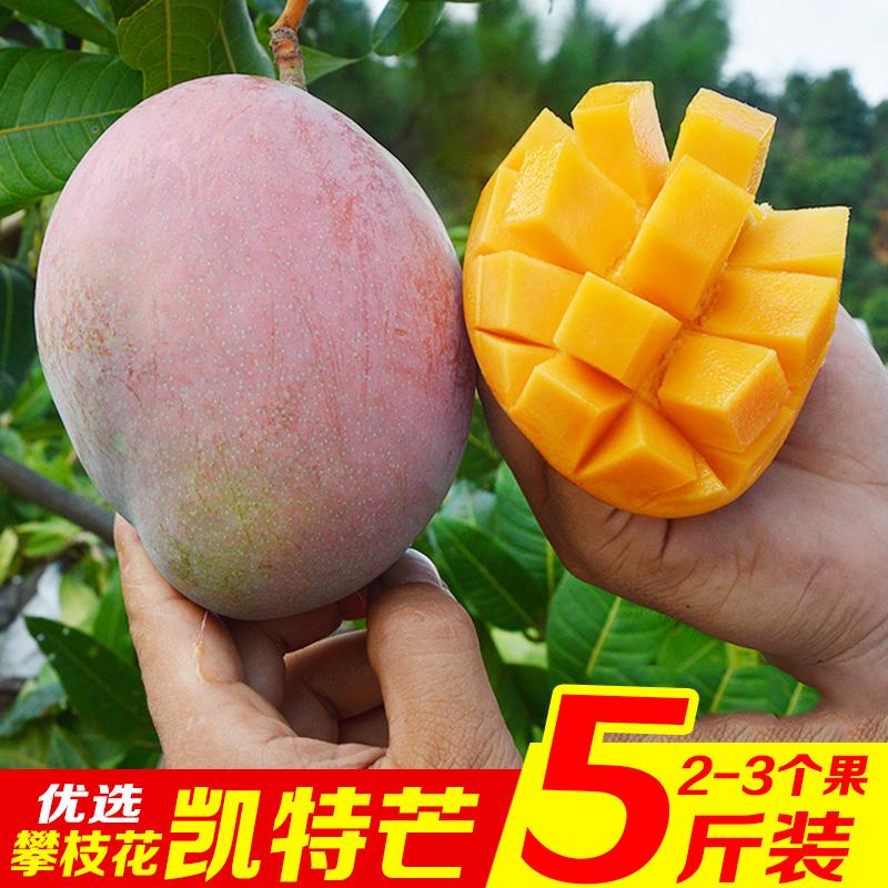 攀枝花凯特芒果当季新鲜水果整箱5斤批发包邮非大青芒果桂七芒