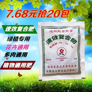 室内盆栽虎皮兰通用型肥料八仙花