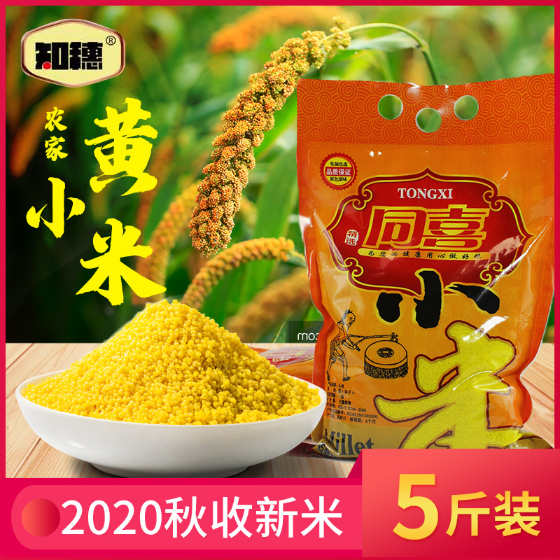 Fresh organic yellow millet in 2020 new rice, five grains and miscellaneous grains
