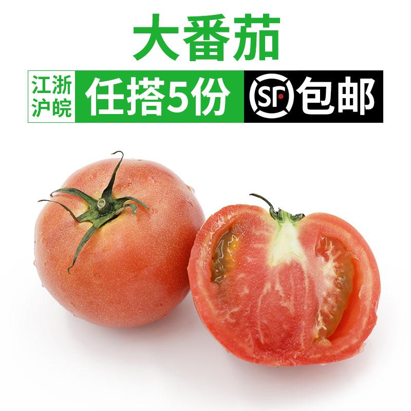 大西红柿500g 大番茄农家自种新鲜蔬菜现摘自然熟 5件顺丰包邮