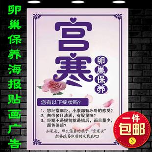 美容理疗宫寒卵巢保养调理作用海报 水疗SPA馆保健养生广告写真画
