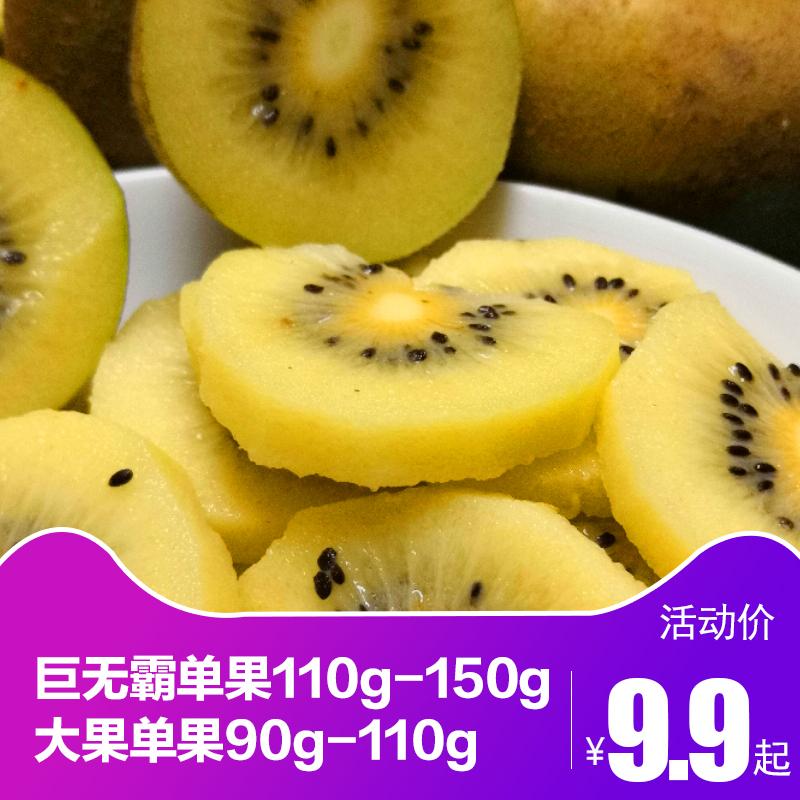 黄心猕猴桃新鲜包邮四川蒲江金艳奇异果新鲜水果当季大果非红心果