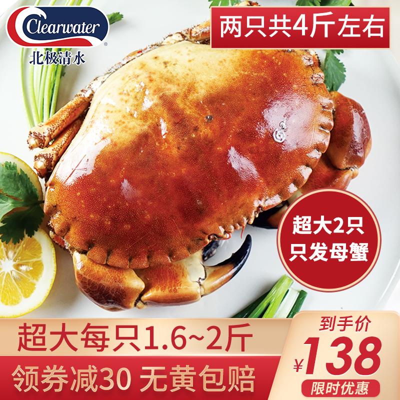 clearwater熟冻面包蟹鲜活超大两只母蟹特大海螃蟹海鲜即食梭子蟹