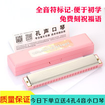 Genuine perforated harmonica children beginners with 24 hole c tone polyphonic color adult children harmonica piano