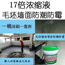 透明防水剂拌水泥砂浆混凝土添加 防潮防霉墙面处理建筑防水涂料图片