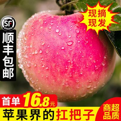 苹果水果新鲜当季带箱10斤批应季脆甜陕西红富士非山东丑嘎啦包邮