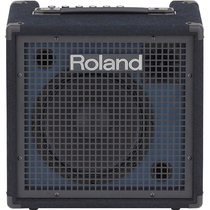Roland Roland KC80 KC220 KC400 KC600 Electric Drum guitar keyboard synthesizer speaker stereo