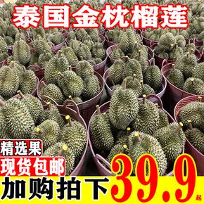 泰国金枕头榴莲新鲜进口当季热带水果整箱包邮带壳2-10斤巴掌榴莲