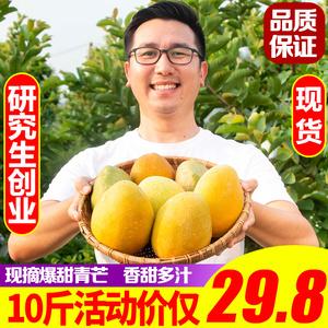研究生当季新鲜热带水果越南特大青芒果整箱10斤甜心包邮非攀枝花