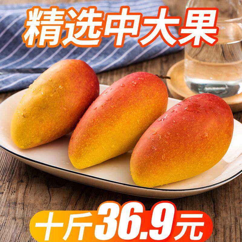 广西凯特大芒果水果新鲜批发包邮当季整箱10斤大果攀枝花特产现摘