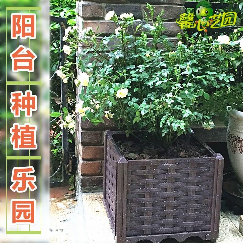 特价阳台种菜盆 特大蔬菜种植箱 长条花槽长形屋顶菜园塑料深花盆
