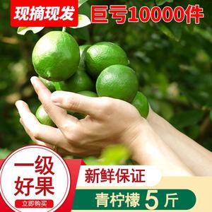 现摘青柠檬5斤净重一级新鲜柠檬当季水果皮薄多汁包邮香水
