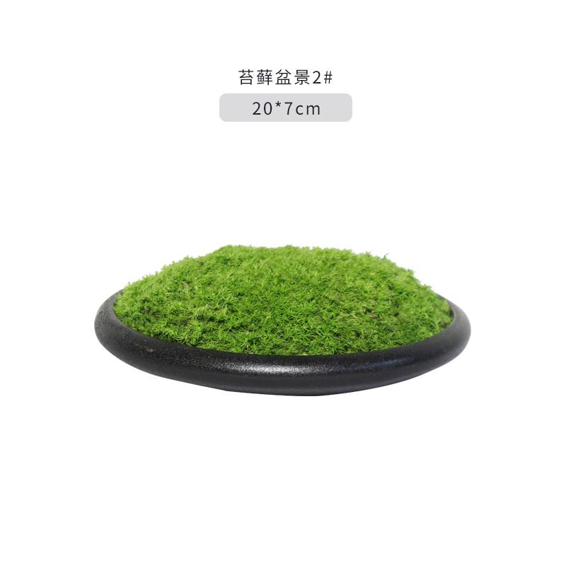 中国式の苔盆栽の青苔のミニチュアbリビングの玄関で見た室内の茶テーブルの禅意築山の小さな盆栽が飾られています。