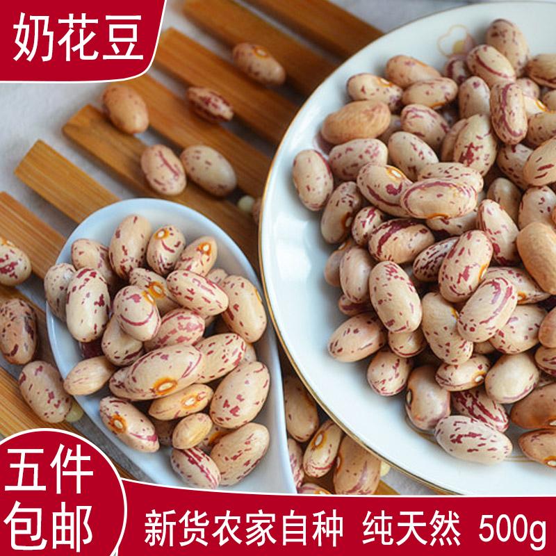 五斤包邮新货农家自种金丝豆红花豆奶花豆芸豆杂粮粗粮500g