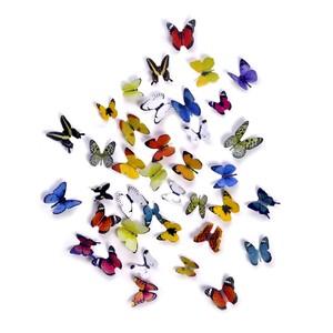 小蝴蝶装饰品贴纸创意爆改出租房墙贴画房间背景墙壁墙上布景图案