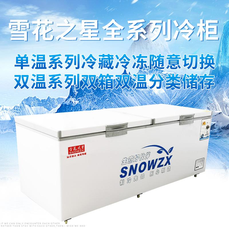 升节能商用单温双温两用大冰柜冷柜冷冻冷藏速冻雪柜1018雪花之星
