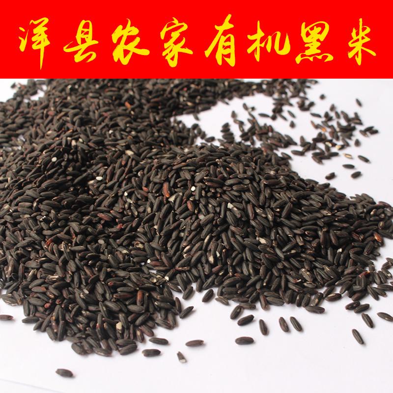 正宗洋县黑米 农家黑米黑糯米杂粮天然无染色黑米500g