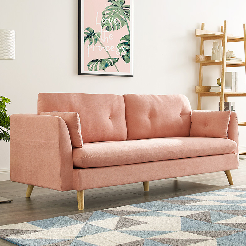 Pink Nordic small family type ins fabric sofa simple double three person living room detachable and washable sofa combination