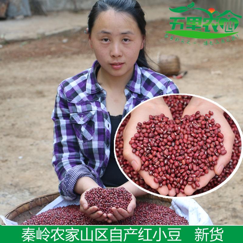 新货 红小豆 农家自产 赤豆红豆 粮油米面五谷杂粮非赤小豆500g
