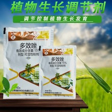 SY Paclobutrazol chlormectin fleshy prevents elongation and promotes root development of flowers and trees chlormectin quality guarantee