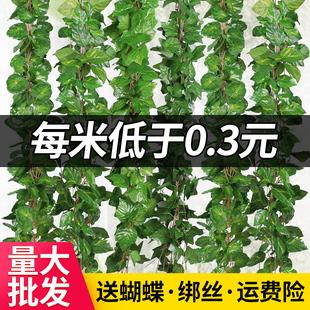 仿真葡萄叶假花藤条藤蔓植物塑料绿萝树叶子绿叶下水管道装饰吊顶
