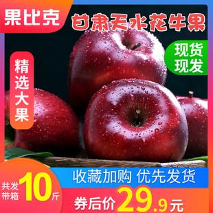 【买1送1】甘肃天水花牛苹果水果新鲜当季整箱蛇果包邮带箱装10斤