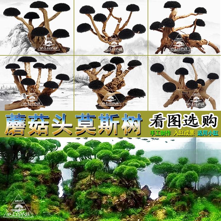蘑菇头莫斯树骨架杜鹃根沉木鱼缸水草缸造景生化棉树冠迎客松树形