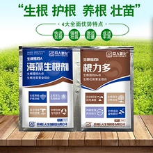 Rooting Fluid to Strengthen Seedlings, Cutting, Transplanting, Pot-transplanting, Growth Regulator Rooting Agent to Promote Live Garden