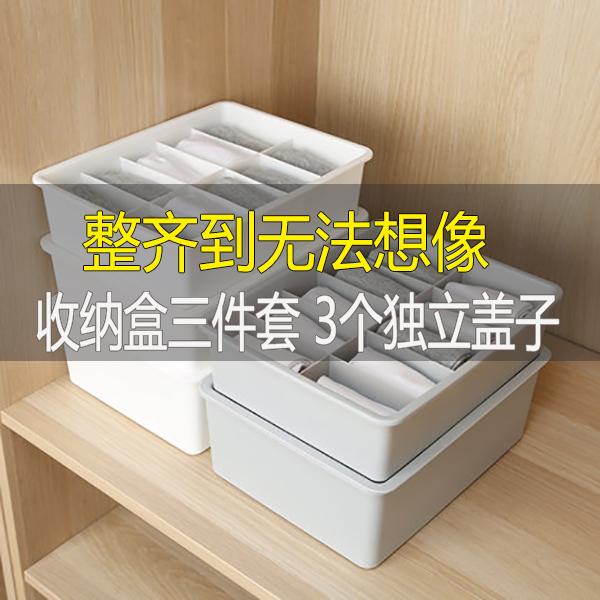 内衣收纳盒袜子内裤文胸收纳格子塑料分格收纳箱三件套有盖