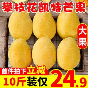 新鲜攀枝花10斤凯特芒果应季现摘水果整箱青热带助农忙果包邮当季